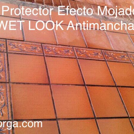 PROTECTOR EFECTO MOJADO WET LOOK ANTIMANCHAS
